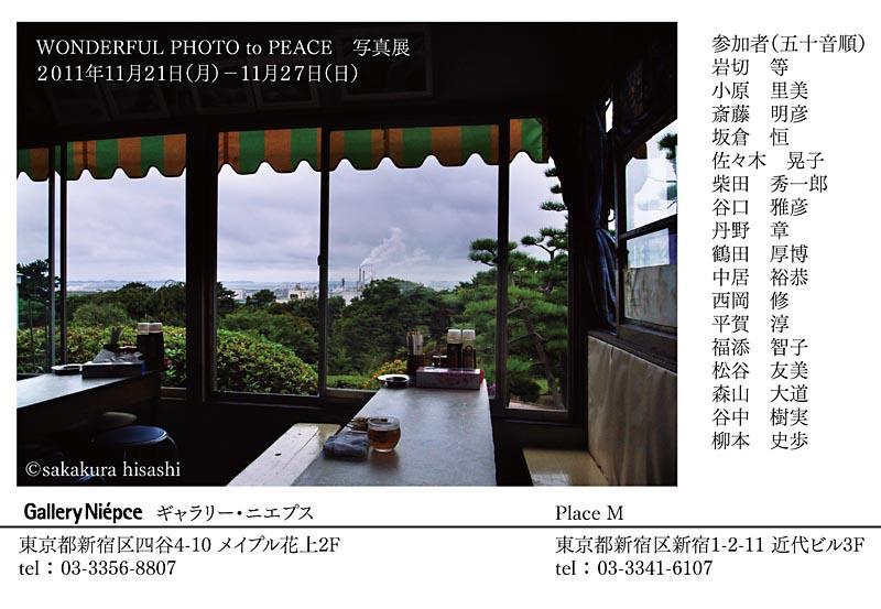 WPP-800dm.jpg